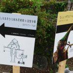 大阪から信楽へ。えんとつ町のプペル展in滋賀への電車旅